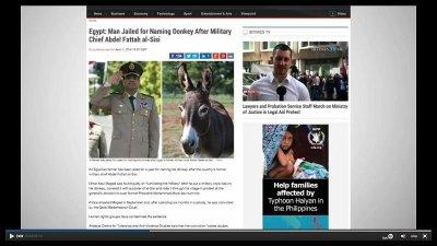Farmer jailed for dressing donkey like Egyptian presidential candidate Abdel-Fattah al-Sisi