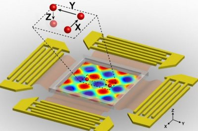 'Acoustic tweezers' manipulate cells with sound waves