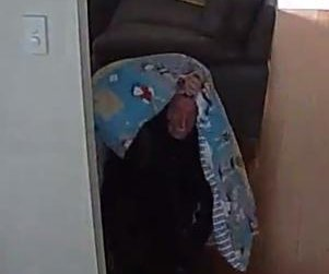 Burglar attempts to hide from CCTV camera with child's blanket