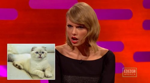 John Cleese tells Taylor Swift that her cat is 'the weirdest cat I've ever seen'