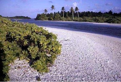 Island nation fighting sea level rise