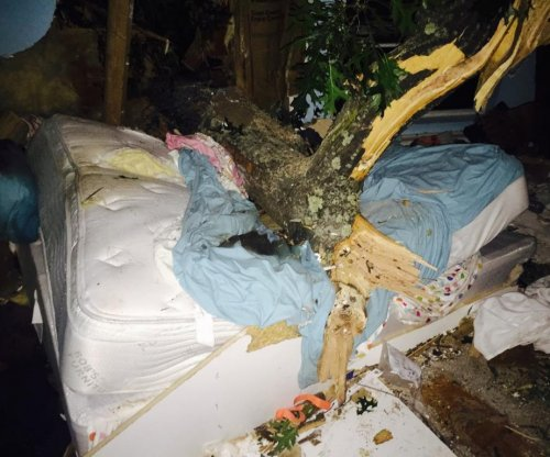 Woman pinned to her bed by 5,000-pound tree
