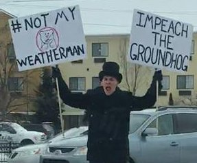 Michigan man protests Punxsutawney Phil: 'Impeach the groundhog!'