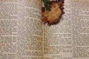 Oklahoma family reunited with deceased mother's 1946 Bible
