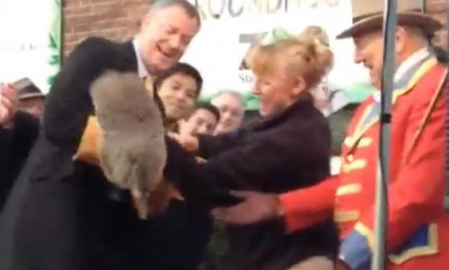 Bill de Blasio-dropped groundhog dies, zoo accused of cover-up