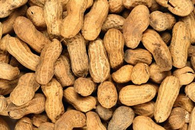 Peanut powder could prevent peanut allergy, study says