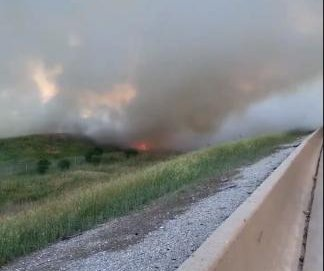 Large grass fire caused by bird crashing into power lines