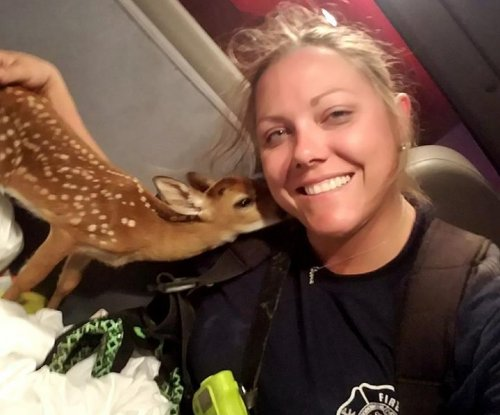 Firefighter rescues endangered deer from Florida brush fire
