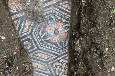 Archaeologists find Roman mosaic floor beneath a row of vines in Italy