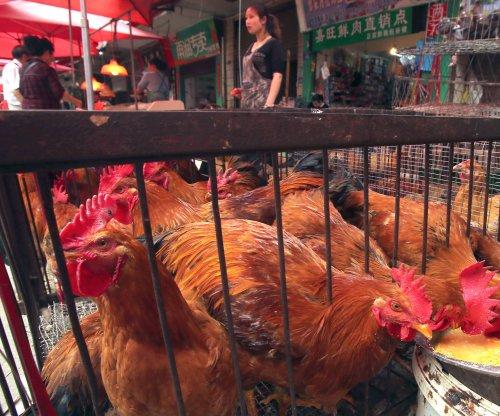 Human cases of bird flu climb in China