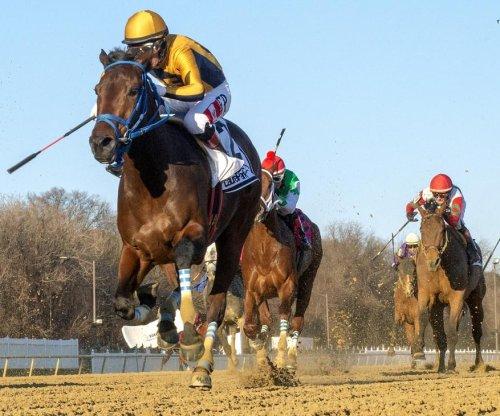 New names emerge in weekend sprint, turf races