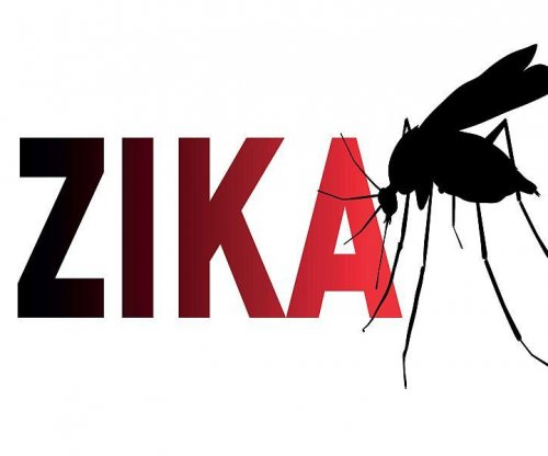 Zika virus may linger in the eyes, researchers find