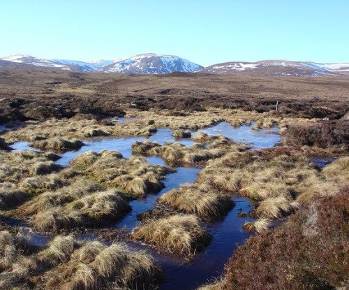 Rising temperatures enabled peatland formation at the end of the last ice age