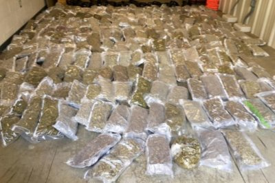 Police find 260 pounds of pot hidden in truck load of lettuce