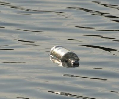 Canadian student unraveling message in a bottle mystery