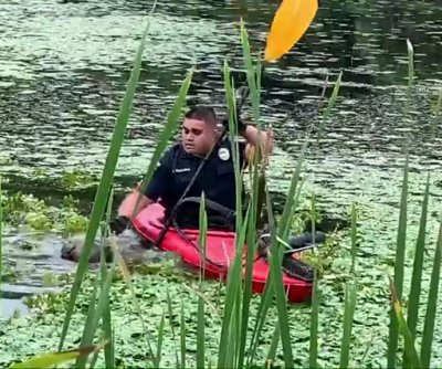 Police borrow kayak to rescue dog stranded in pond