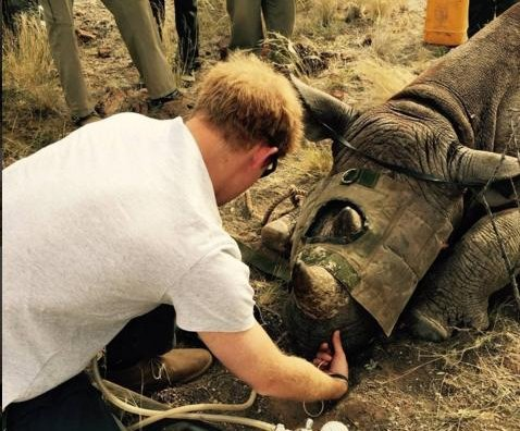 Prince Harry shares photos from South Africa trip, speaks out against poaching