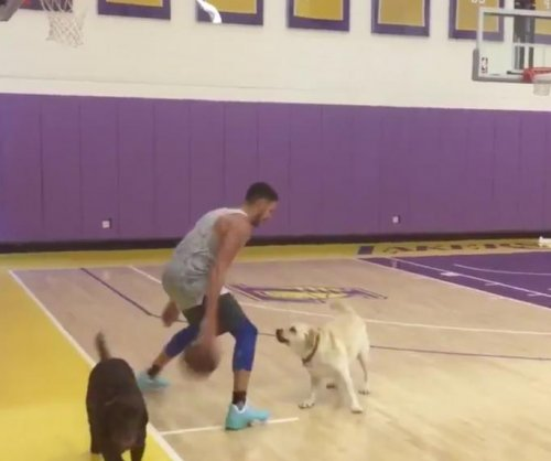 Klay Thompson: Golden State Warriors star balls out with two dogs
