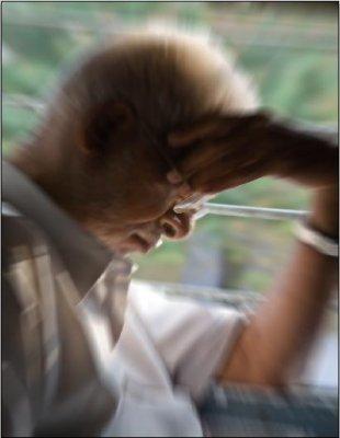 Alzheimer's blood test not far away