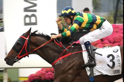 A new 'Winx' in Australia? A new star in Hong Kong?