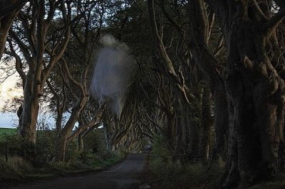 'Ghost' appears in photo at 'Game of Thrones' site