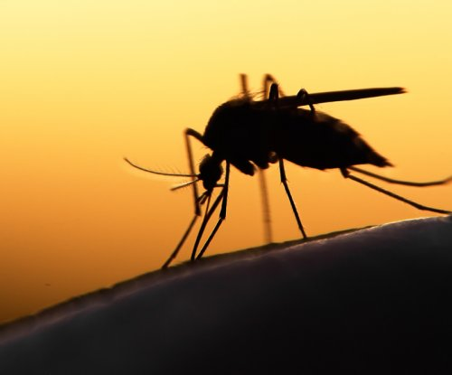 Genetic engineering tech promises to sterilize disease-spreading mosquitoes