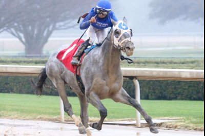Kentucky Derby contenders in weekend action from New York to California