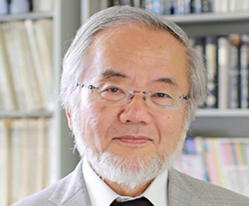 Cellular biologist Yoshinori Ohsumi wins Nobel Prize in medicine