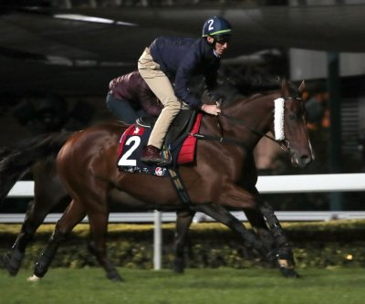 Hong Kong races, 2-year-old events highlight weekend horse racing