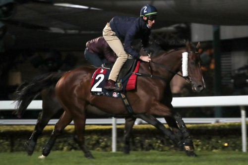 Hong Kong International races, 2-year-old events highlight weekend horse racing
