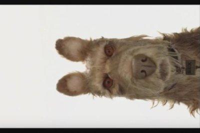 Wes Anderson announces title, cast for new stop-motion film