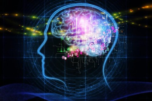 Study: Cognitive ability is a whole-brain phenomenon