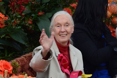 Jane Goodall says SeaWorld should close