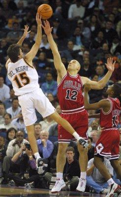Del Negro apparent Bulls choice as coach