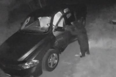 Bear caught on camera breaking into New Hampshire car