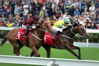 UPI Horse Racing Roundup: Persian Knight wins in Japan, Werther wins at Sha Tin