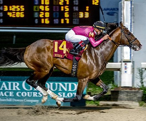 War of Will looks to sweep New Orleans series en route to Kentucky Derby