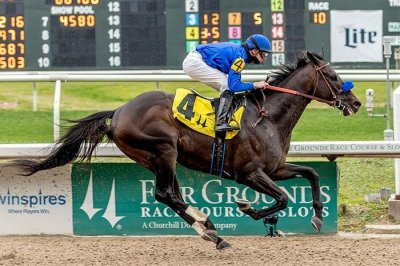 """Four Breeders' Cup """"Win and You're In"""" races on tap around the world"""