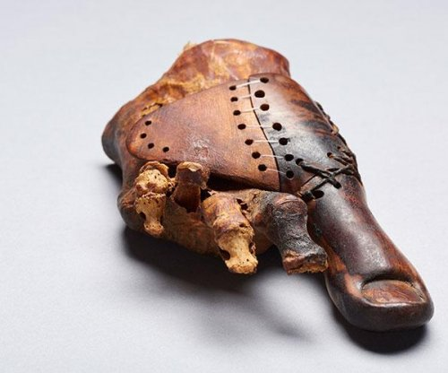 Ancient prosthesis: Scientists are studying a 3,000-year-old wooden big toe