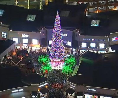 World's largest live-cut Christmas tree illuminated in California