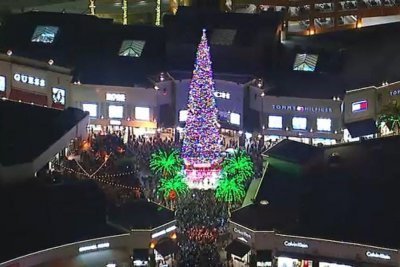 World's largest live-cut Christmas tree illuminated in California