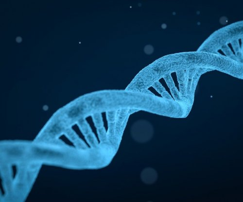 Scientists find toolkit to aid repair of damaged DNA