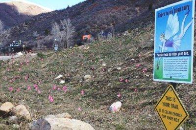 Deja Poo: Aspen mountain plagued by major dog doo problem