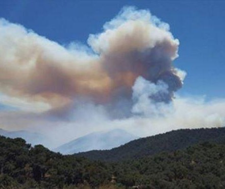 Northern California wine grapes exposed to smoke from Soberanes Fire; wine to taste 'differently'