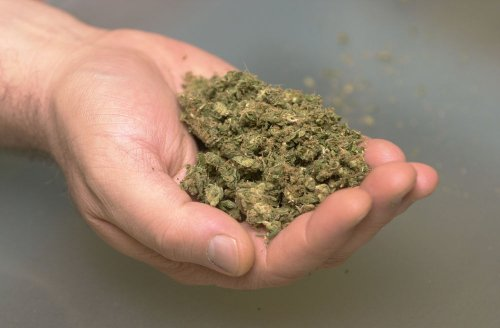 The Issue: Should marijuana be regulated like alcohol?