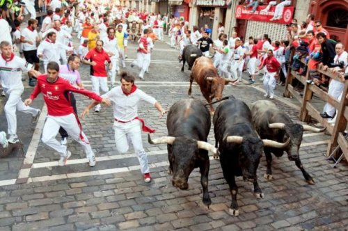 Seven killed in Spain's 'running of the bulls'