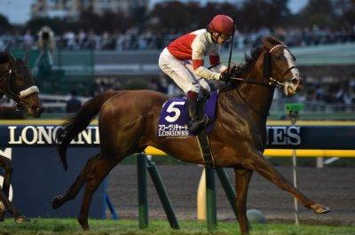 Suave Richard wins Japan Cup; Sadler's Joy, Midcourt top U.S. horse racing action