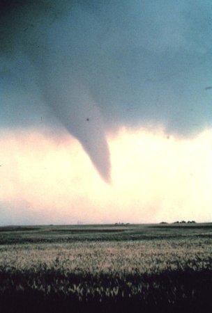 Tornado strikes southern Ontario, 58,000 without power