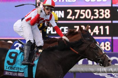 After Breeders' Cup win, Bricks and Mortar looks like Horse of the Year