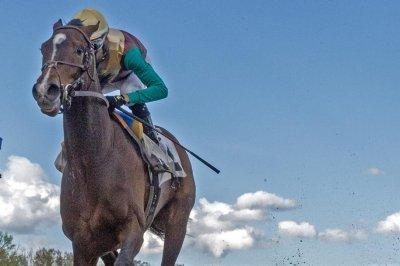Kentucky Derby horses gather in Louisville, Alwaysmining wins spot in Preakness